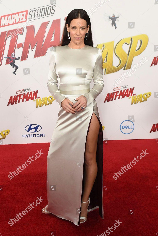 97ee6562129f5 Evangeline Lilly arrives Los Angeles premiere AntMan Editorial Stock ...