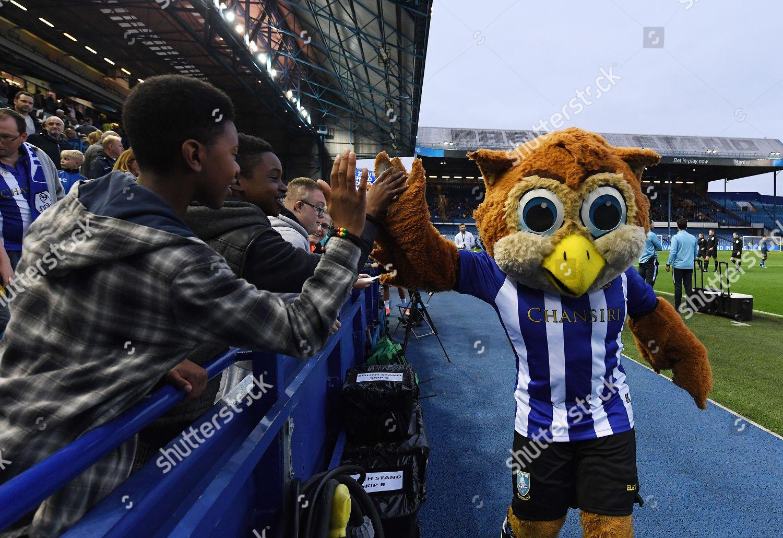 Sheffield Wednesday Mascot Barney Owl Meets Fans Editorial