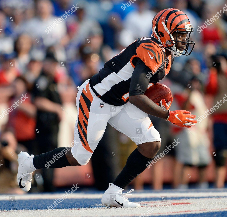 buy online 0f04f 0558c Cincinnati Bengals wide receiver Kermit Whitfield fields ...