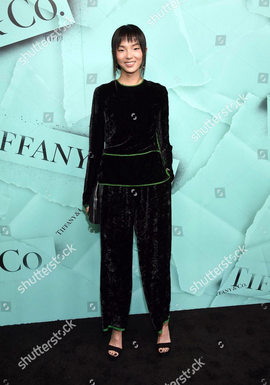 d50f9e1b071d Xiao Wen Ju attends Tiffany Co 2018 Editorial Stock Photo - Stock ...