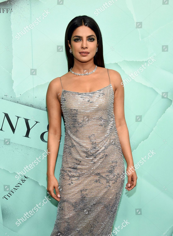 3212ef9e563b Priyanka Chopra attends Tiffany Co 2018 Blue Editorial Stock Photo ...
