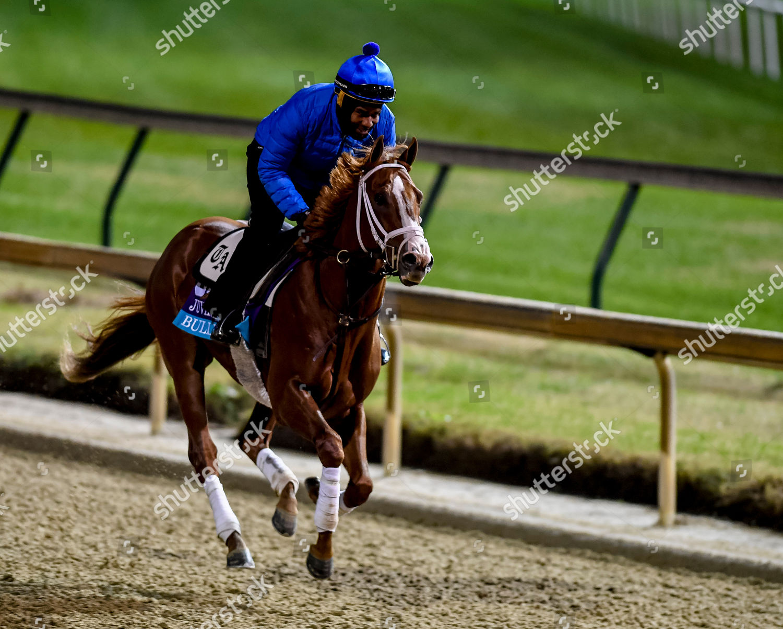 Horse Racing Breeders Cup Preparations Louisville USA