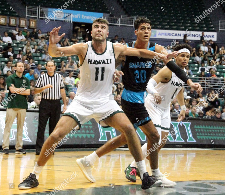 best sneakers b4ef7 43788 Hawaii Rainbow Warriors center Mate Colina 11 Editorial ...