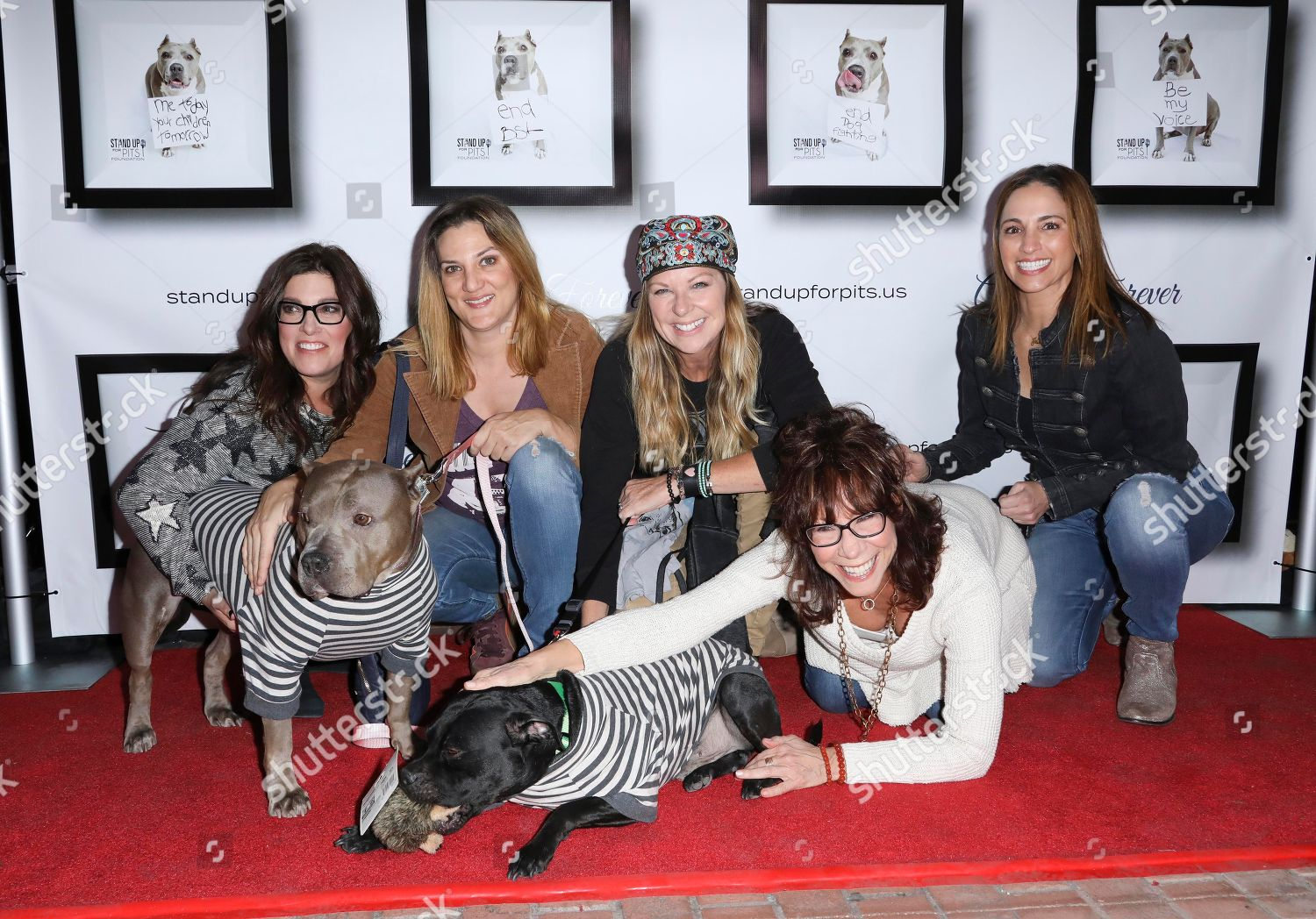 Stock photo of 8th Annual Stand Up For Pits, Los Angeles, USA - 11 Nov 2018