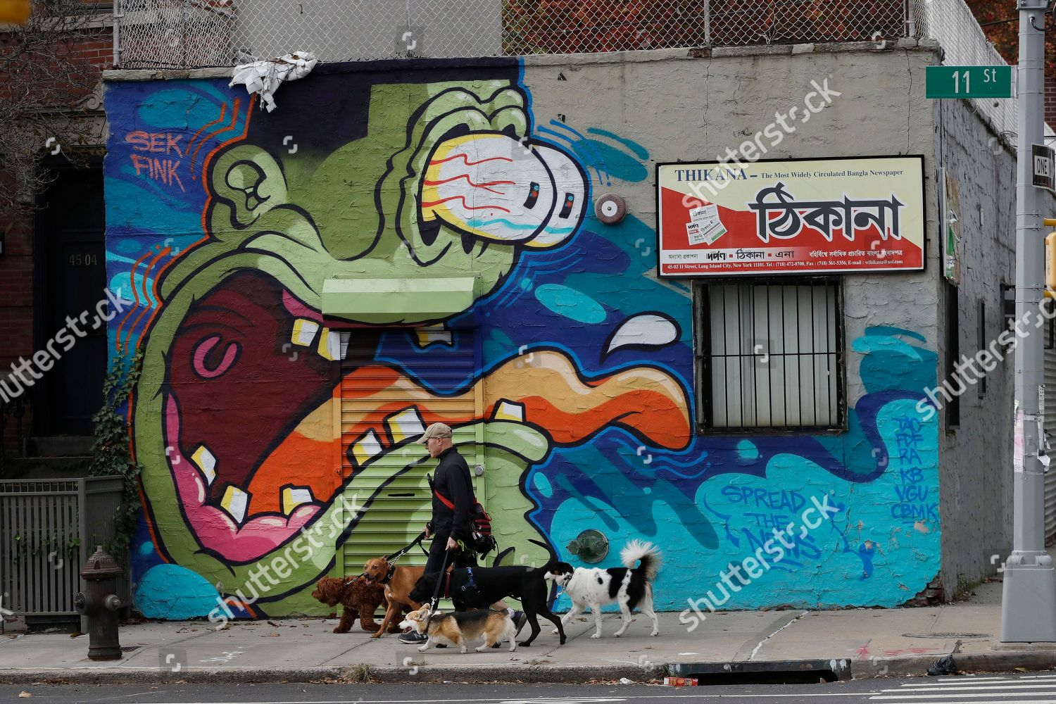 dog walker passes mural Long Island City Editorial Stock Photo