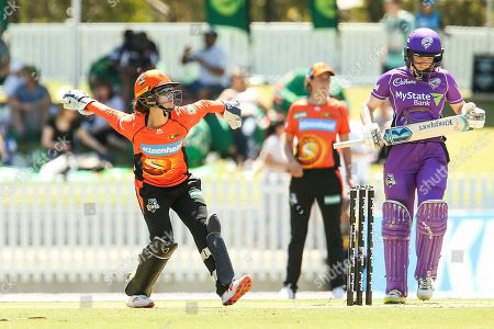Emily Smith of Perth Scorchers fields during the Perth Scorchers vs Hobart Hurricanes Women's Big Bash League match at the CitiPower Centre, St.Kilda, Melbourne. Picture by Martin Keep