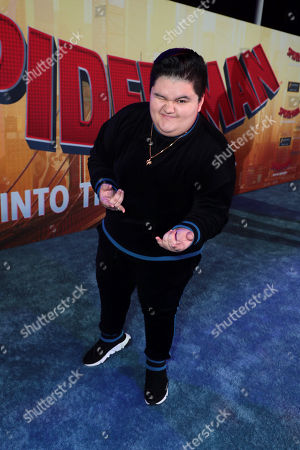Jovan Armand during the Red Carpet Premiere of Columbia Pictures and Sony Pictures Animation's SPIDER-MAN: INTO THE SPIDER-VERSE at Regency Village Theatre.