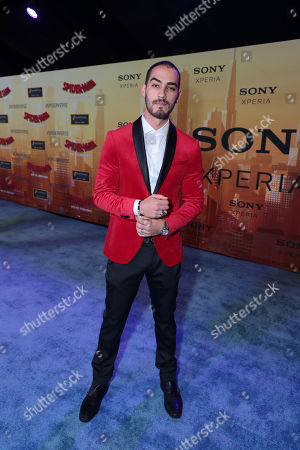 Michel Duval during the Red Carpet Premiere of Columbia Pictures and Sony Pictures Animation's SPIDER-MAN: INTO THE SPIDER-VERSE at Regency Village Theatre.