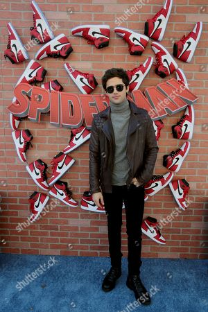 """Max Ehrich during the Red Carpet Premiere of Columbia Pictures and Sony Pictures Animation's """"Spider-Man: Into the Spider-Verse"""" at Regency Village Theatre, in Los Angeles"""