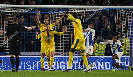 Crystal Palace's James McArthur  remonstrates with the referee after bringing  down Brighton's Jose Izquierdo for a penalty during the Premier League match between Brighton & Hove Albion and Crystal Palace at the Amex Stadium in Brighton. 4 Dec 2018