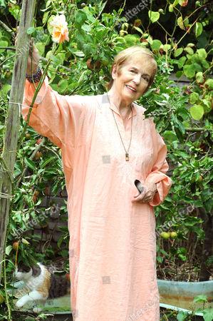 Stock Image of Barbara Shelley