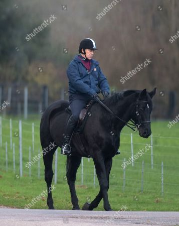 Prince Andrew horse riding at Windsor Castle
