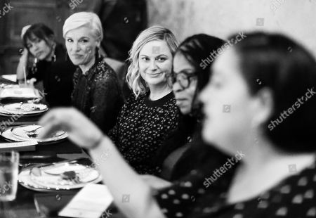 Stock Image of Rashida Jones, Cecile Richards, Amy Poehler, Susan Burton and Wendy Carrillo