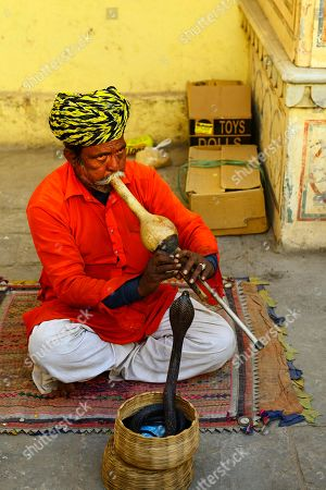 Snake charmer with cobra in the city palace, Jaipur, Rajasthan, India
