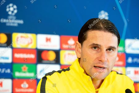 Young Boys Bern press conference