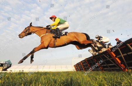 Horse Racing - 11 Dec 2018