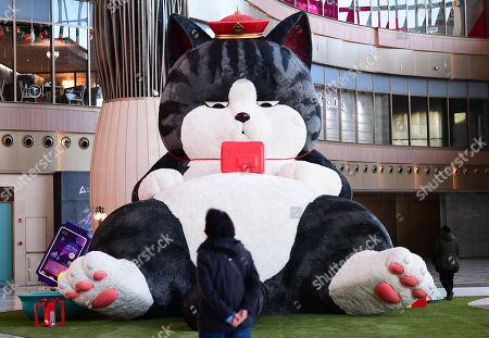 Giant Cat Toy, Shenyang