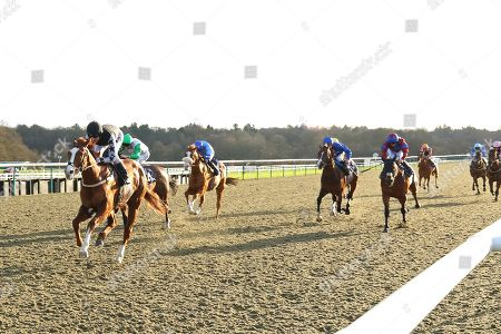KEYSER SOZE ridden by Tom Queally 1st in The sunracing.co.uk Handicap Stakes at Lingfield Copyright: Ian Headington/racingfotos.com