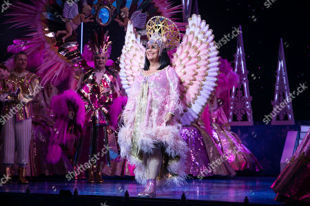 Stock Picture of Dawn French (The Wicked Queen) during the curtain call