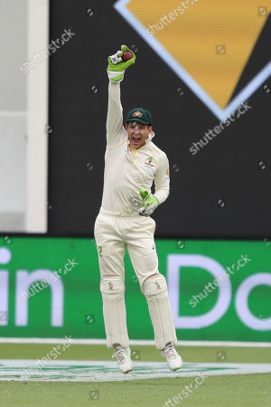 Australia's Tim Paine celebrates the wicket of India's Cheteshwar Pujara during play in the second cricket test between Australia and India in Perth, Australia