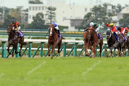 , Admire Mars (second from left) with Mirco Demuro up wins the Asahi Hai Futurity Stakes at Hanshin racecourse.