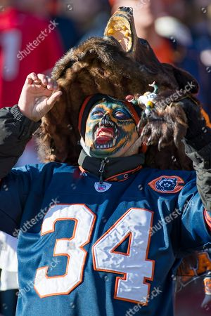 Chicago, Illinois, U.S. - A die hard Bears fan in action during the NFL Game between the Green Bay Packers and Chicago Bears at Soldier Field in Chicago, IL. Photographer: Mike Wulf