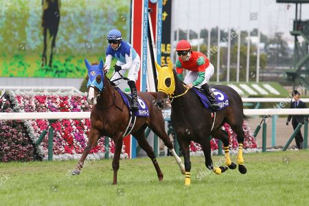 (L-R) Admire Mars ( Mirco Demuro), Meiner Surpass (Yuji Tannai) - Horse Racing : Admire Mars ridden by Mirco Demuro and Meiner Surpass ridden by Yuji Tannai before the Asahi Hai Futurity Stakes at Hanshin Racecourse in Hyogo, Japan.