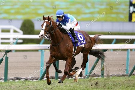 Admire Mars ( Mirco Demuro) - Horse Racing : Admire Mars ridden by Mirco Demuro wins the Asahi Hai Futurity Stakes at Hanshin Racecourse in Hyogo, Japan.