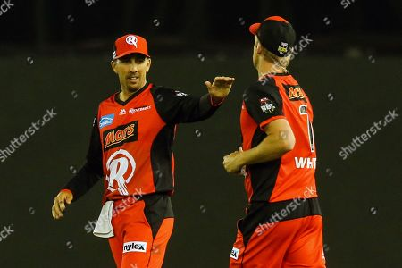 Tom Cooper of Melbourne Renegades celebrates a wicket with Cameron White of Melbourne Renegades during the Big Bash match between Melbourne Renegades vs Perth Scorchers at Marvel Stadium, Melbourne