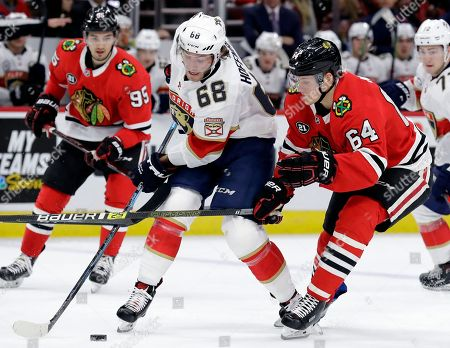 Mike Hoffman, David Kampf. Florida Panthers left wing Mike Hoffman (68) controls the puck against Chicago Blackhawks center David Kampf (64) during the second period of an NHL hockey game, in Chicago