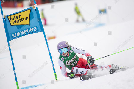 Anna Veith of Austria clears a gate during the first run of the women's FIS Alpine Skiing World Cup Giant Slalom race in Semmering, Austria, 28 December 2018.