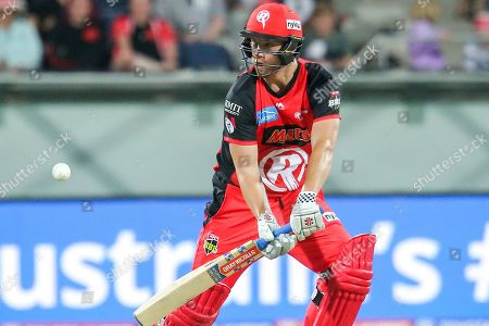 Editorial photo of Melbourne Renegades vs Adelaide Strikers - 03 Jan 2019