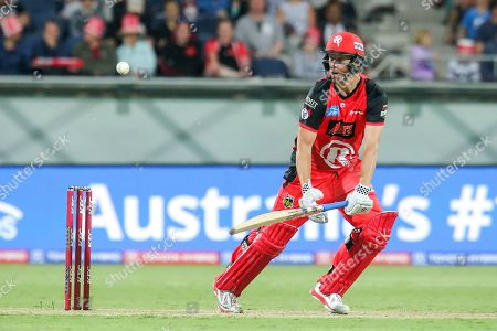 Cameron White of Melbourne Renegades bats during the big bash league match between Melbourne Renegades and Adelaide Strikers at the GMHBA Stadium, Geelong, Victoria. Picture by Martin Keep