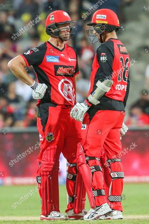 Stock Picture of Cameron White of Melbourne Renegades bats with Tom Cooper of Melbourne Renegades during the big bash league match between Melbourne Renegades and Adelaide Strikers at the GMHBA Stadium, Geelong, Victoria. Picture by Martin Keep