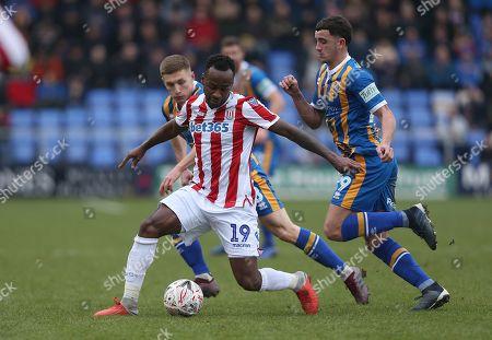 Stoke City's Saido Berahino holds off Shrewsbury Towns Oliver Norburn and  Greg Docherty