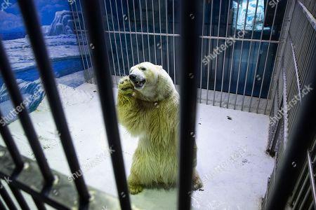 Photos de stock de Harbin Ice Snow World Festival