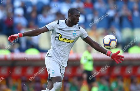 Stock Picture of Alfred Gomis of Spal
