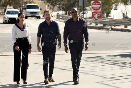Nishi Munshi as Erica Malick and Seann William Scott as Wesley Cole and Damon Wayans as Roger Murtaugh