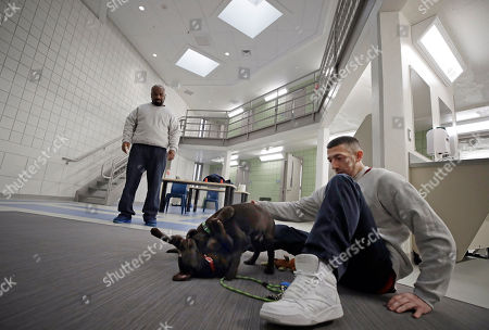 """Inmates Justin Martin, right, and Jonathan Ladson, watch chocolate lab puppies play at Merrimack County Jail in Boscawen, N.H. The New Hampshire jail is the first in the state to partner prisoners with the """"Hero Pups"""" program to foster and train puppies with the goal of placing them with military veterans and first responders in need of support dogs"""