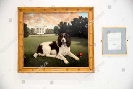 "This, photo shows ""Millie on the South Lawn"" by Christine Merrill, alongside a letter from former first lady Barbara Bush on display at the American Kennel Club Museum of the Dog in New York. The museum opens Feb. 8 in midtown Manhattan"