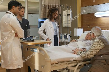 Manish Dayal as Devon Pravesh, Matt Czuchry as Conrad Hawkins, Melina Kanakaredes as Lane Hunter, Jenny O'Hara as Shirley Harris and Dakin Matthews as Howie Green