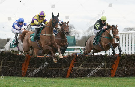 Warwick Racecourse The Trial Racing TV for Free Now Novices' Handicap Hurdle Race. Dyliev ridden by James Bowen clears the final hurdle to win.