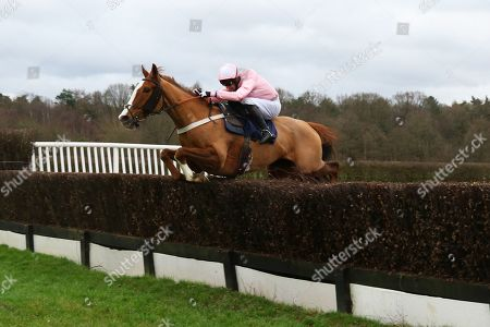 UT MAJEUR AULMES ridden by James Best in The Starsports.bet Handicap Steeple Chase at Lingfield Copyright: Ian Headington/racingfotos.com