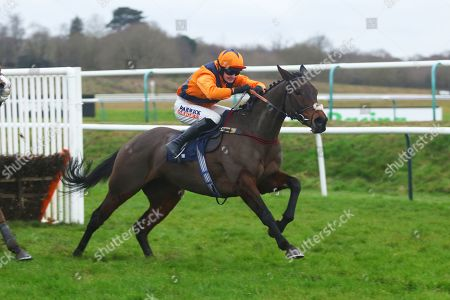 Stock Photo of POTTERS MIDNIGHT ridden by Jack Quinlan powers away from the last before winning The Read Davy Russell's Exclusive Blog starsportsbet.co.uk Handicap Hurdle at Lingfield Copyright: Ian Headington/racingfotos.com