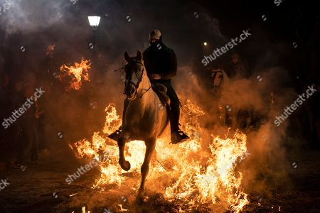 "A man rides a horse through a bonfire as part of a ritual in honor of Saint Anthony the Abbot, the patron saint of domestic animals, in San Bartolome de Pinares, Spain, . On the eve of Saint Anthony's Day, dozens ride their horses through the narrow cobblestone streets of the small village of San Bartolome during the ""Luminarias,"" a tradition that dates back 500 years and is meant to purify the animals with the smoke of the bonfires and protect them for the year to come"