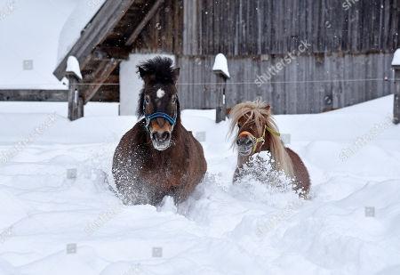 Heavy snowfall hits Austria