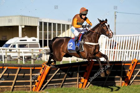 Elusive Belle and Sam Waley-Cohen win the Healthy Pets Novices' Hurdle at Wincanton.