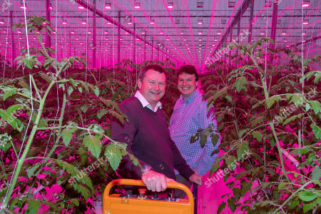 Richard Lewis, Operations Director,Stirling Suffolk and David Scrivens Director Amberside Capital  The 14 acre Suffolk greenhouse that can grow 150m tomatoes a year.