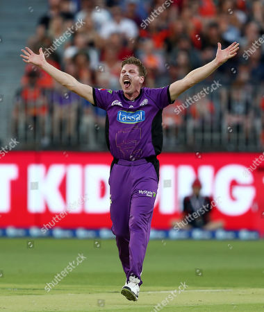 James Faulkner of the Hurricanes appeals for the wicket of Michael Klinger of the Scorchers who is given out