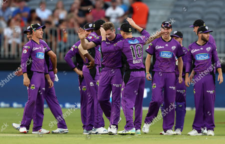 James Faulkner of the Hurricanes celebrates taking the wicket of Michael Klinger of the Scorchers